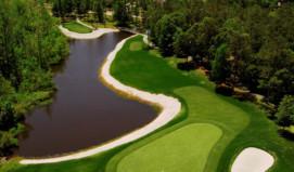 Lion's Paw Golf Links